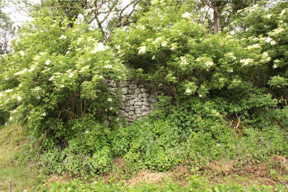 Ostaci Kurtove kule u selu Kljuna kod Nevesinja